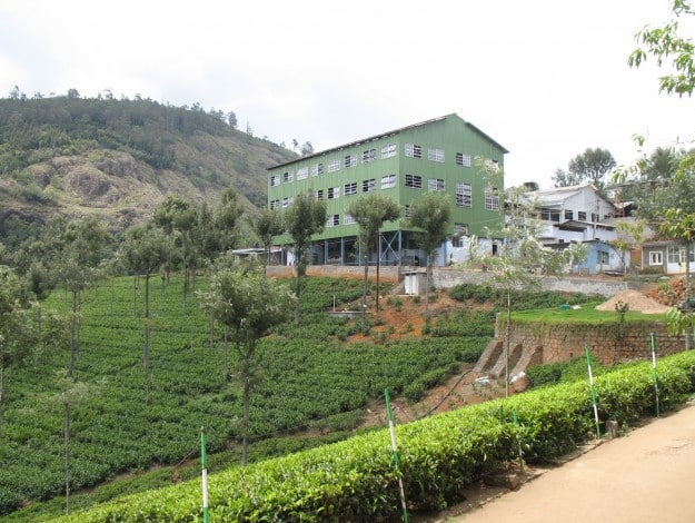 Tea_factory_and_tea_plantation nilgiris