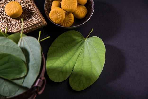 Aapti leaves