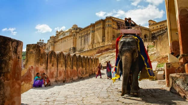 Elephants at Amber Fort