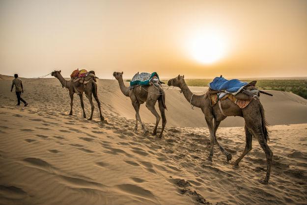 Image result for Khuri Sand Dunes Jaisalmer hd images