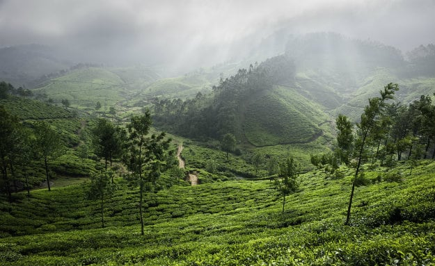 hill-stations-monsoon-india