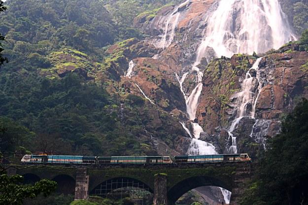 Photograph courtesy: PurshiWikimedia Commons
