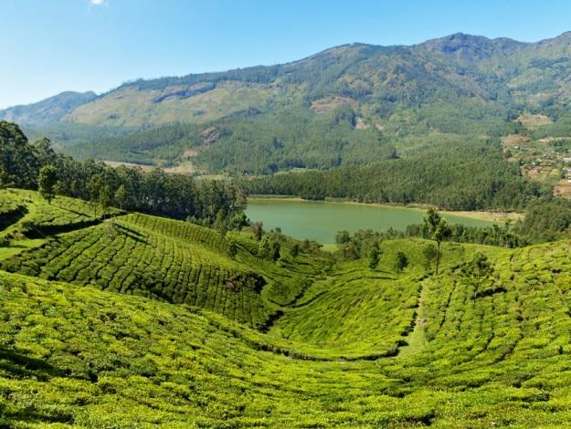Kerala-Matupetty