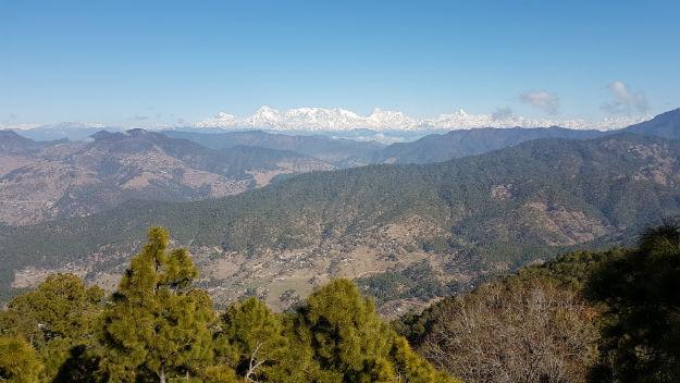 Binsar in Uttarakhand