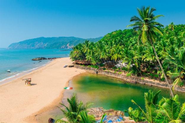 Beautiful Goa landscape