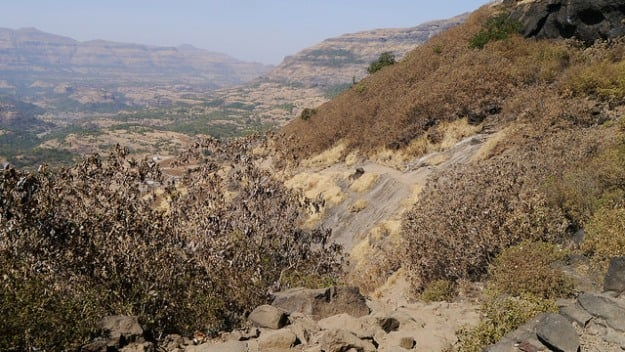 Trail from Pachnai to Harishchandragad, Photograph Courtesy: Dinesh Valke/Creative Commons