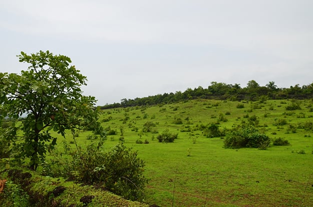 Mangalore in Karnataka