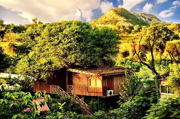The Tree House Resort Jaipur, Photograph Courtesy: Facebook