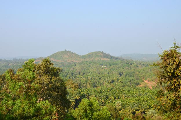Mangalore landscape