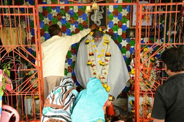 Nag Panchami Nagpur 3