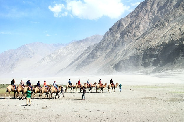 Nubra Valley 7