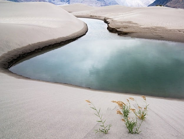River between sand dunes in Nubra