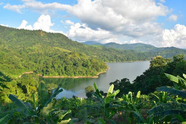 Rainforests Nagaland