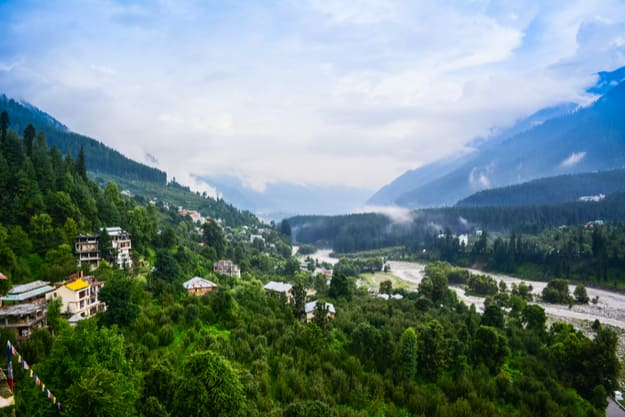 Green Landscape of Manali