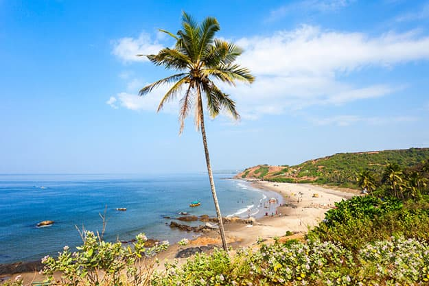 Vagator Images: Beautiful Photos of Vagator Beach in Goa That'll Tempt You to Take a Trip NOW!
