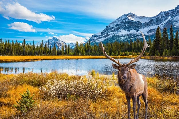 Canada Images 14 Spectacular Canada Photos That Will Spark Your Wanderlust India Com
