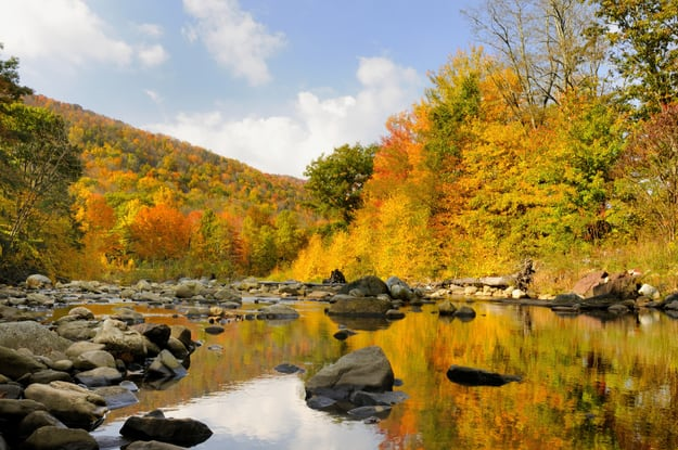 Autumn in West Virginia Along Mountain Stream
