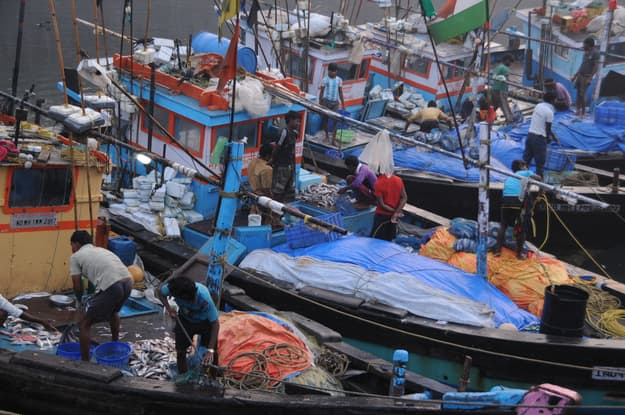 Unidentified Women and men trade in a wide variety of fish at Sassoon Docks in Colaba, South Mumbai