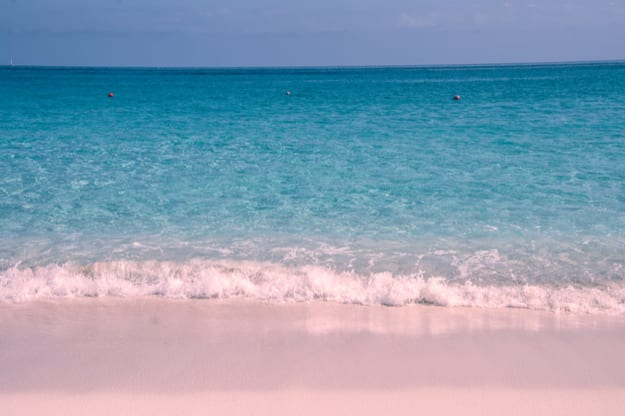 The pink sand beach on Harbour Island, Bahamas