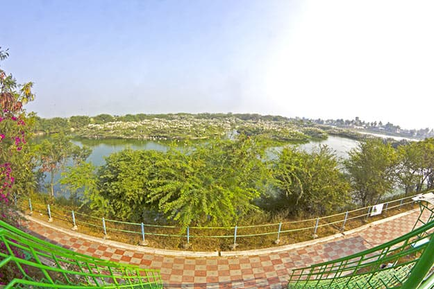 Uppalapadu bird sanctuary