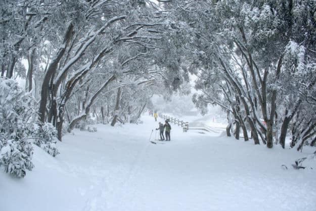 Winter - Australia