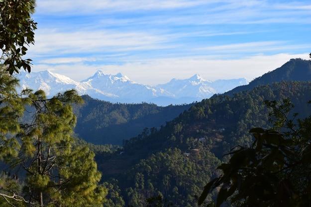 A distant view of the himalayan peaks from Nanda Devi to Nanda Kot as seen at Khali Estate, Binsar