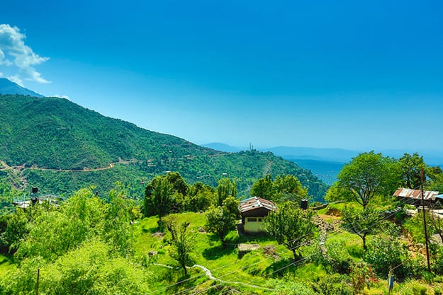 Dharamsala photo 11