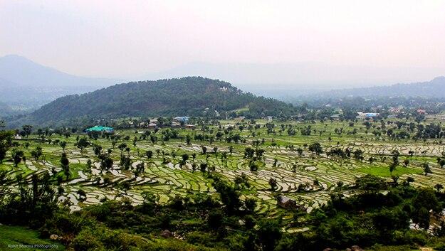 Dharamsala photo 3