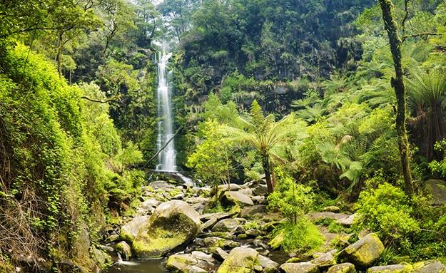 Erskine Falls Australia photo