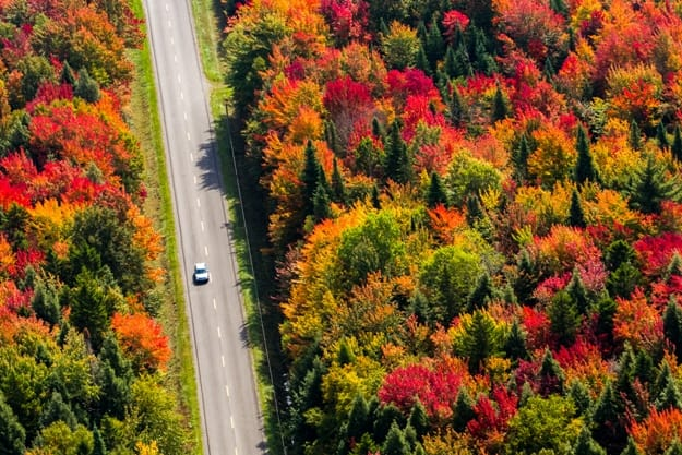 Aerial view of a car driving on a country road through a colorful forest at fall. Quebec, Canada