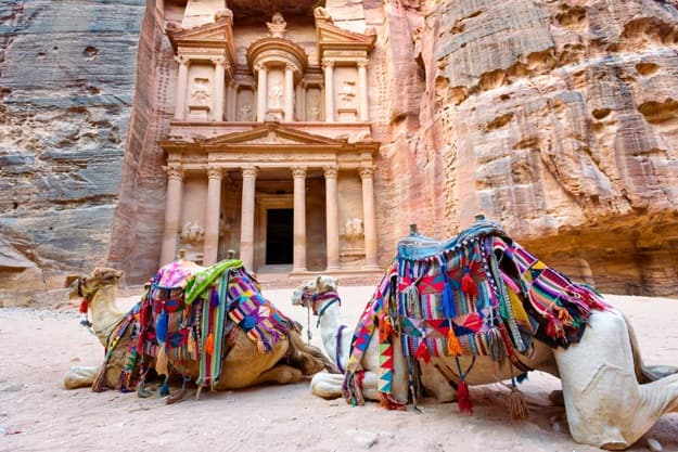 Camels lying in front of El-Khazneh in the ancient city of Petra. Jordan