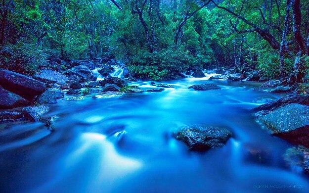 Plover Cove Country Park(Credit-Romain Jacquet Lagreze)