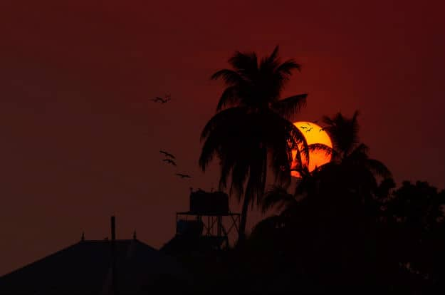 Sunset at Alleppey