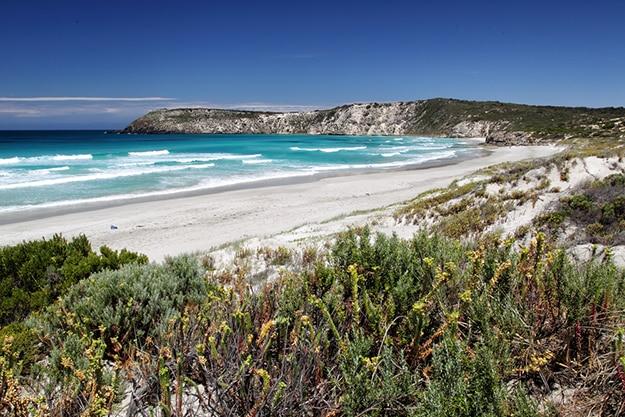 Kangaroo Island South Australia photo 10