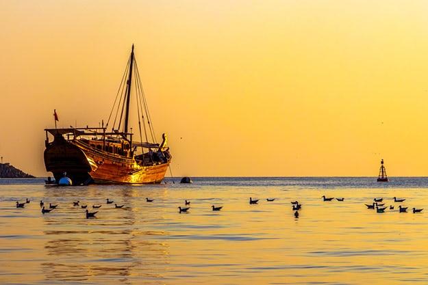 Muscat photo 15