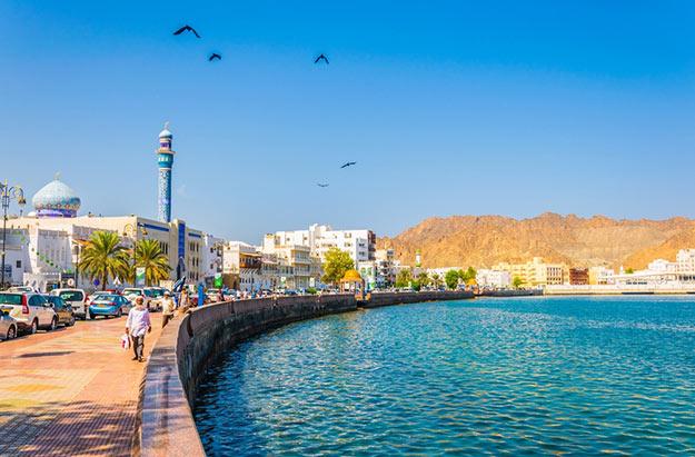 Muscat photo 4
