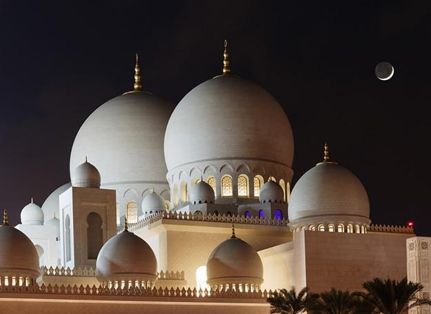 Sheikh Zayed Grand Mosque photo 2