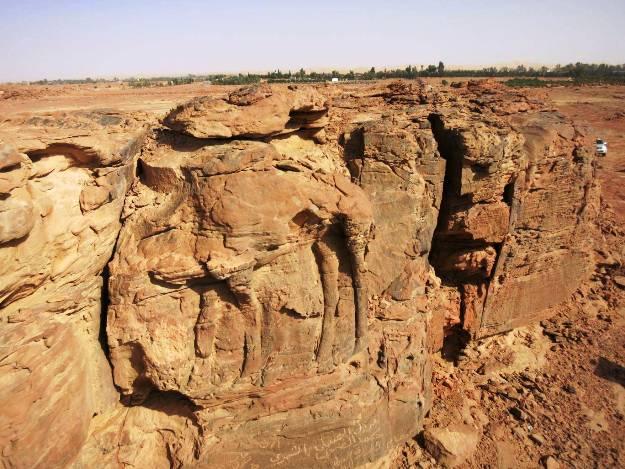 Ancient 2,000 Reliefs of Camels Found in Saudi Arabian Desert