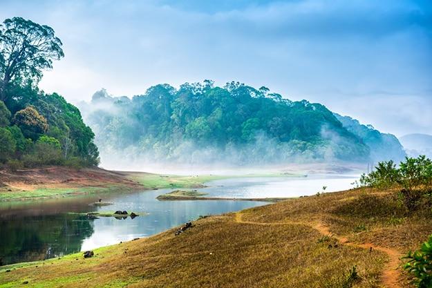 Periyar Kerala photo 2