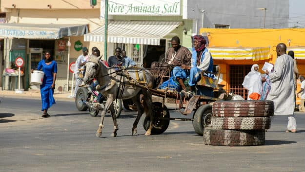 Senegal photo 8