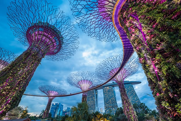 Singapore photo 1 - Gardens by the Bay