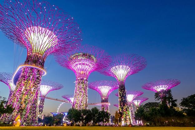 Singapore photo 16