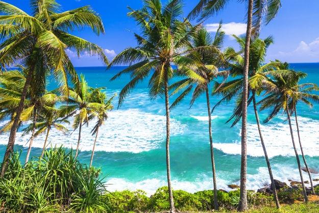 Sri Lanka photo 14