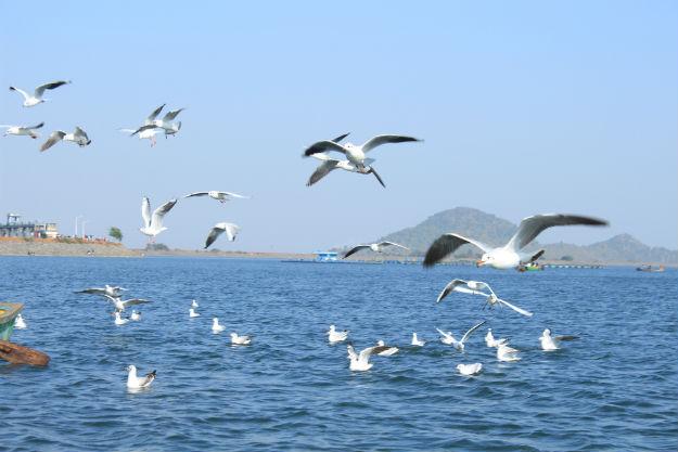 Jharkhand photo 3