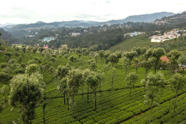 Coonoor photo 6
