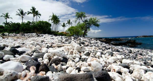 Mauna Kea Beach photo 13