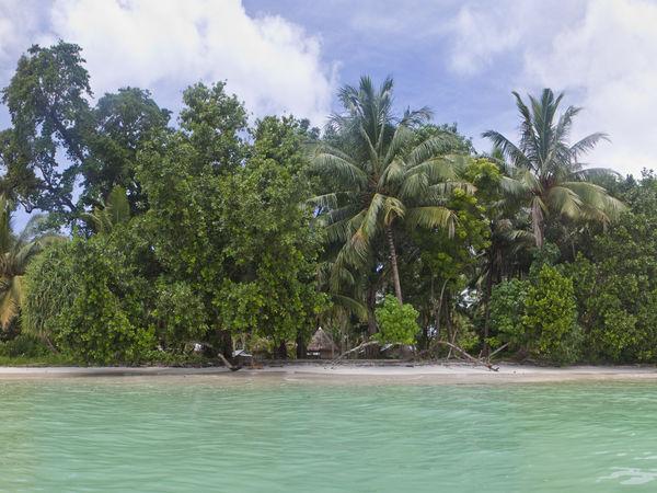 Havelock - Andaman-and-Nicobar-Islands