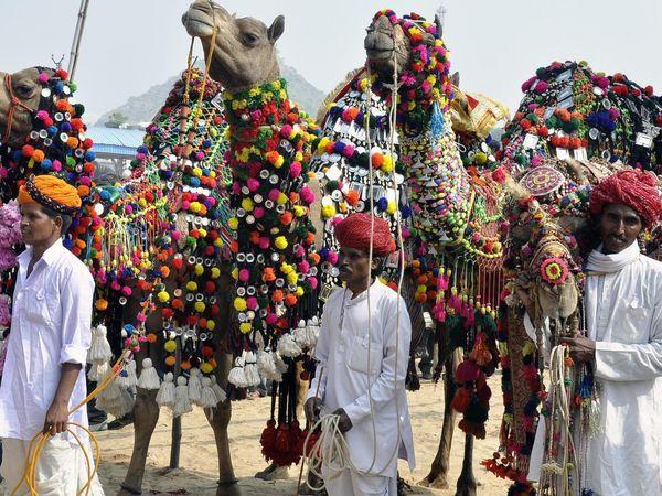 Pushkar fair - Pushkar - Rajasthan