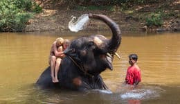 Elephant ride and splash in Goa