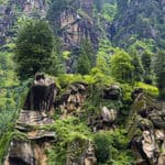 Rocks and greenery in Manali - Manali - Himachal-Pradesh